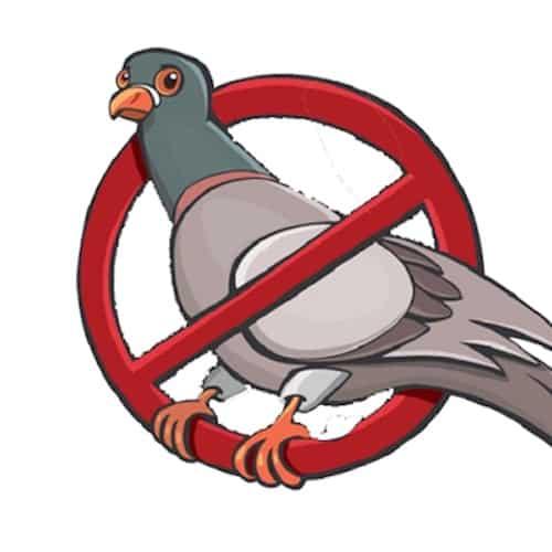 Piccione cartoon con simbolo di divieto