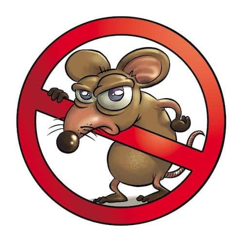 Topo cartoon con simbolo di divieto